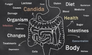 candida-holistic-acupuncture-treatment