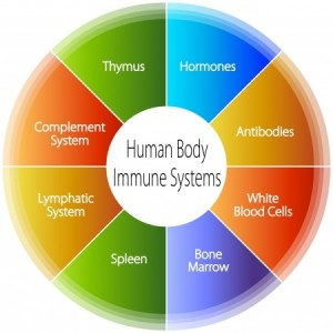 immune-deficiency-immunity-acupuncture